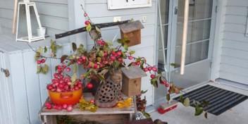 Aspa-koti Härmänrannan ulko-ovella on kauniita koristeita.